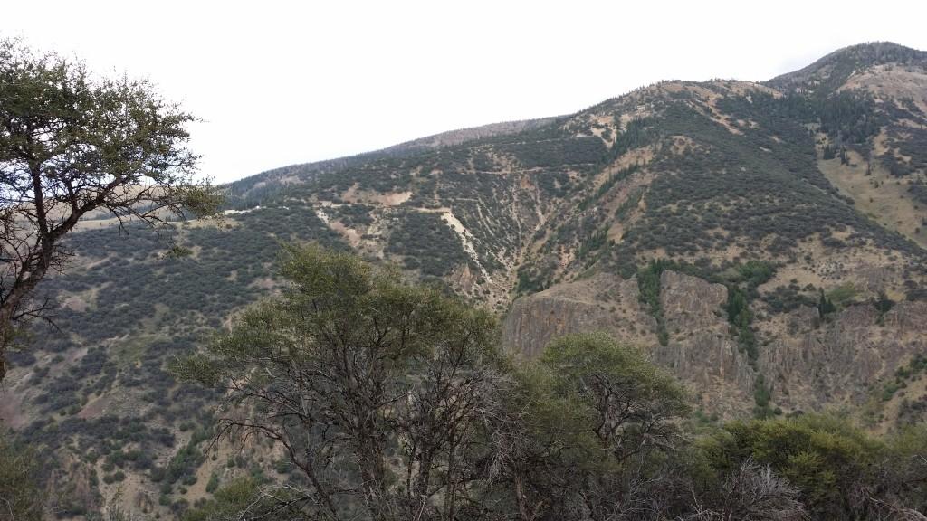 Jarbidge mines